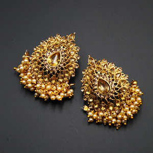 Vika Gold Diamante Stone Earrings - Gold
